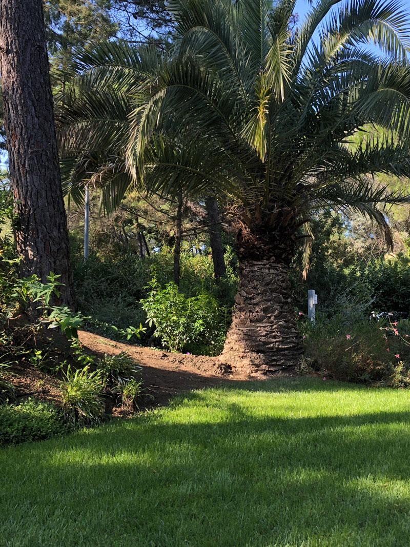 giardino-al-mare-lavori-di-giardinaggio-manutenzione