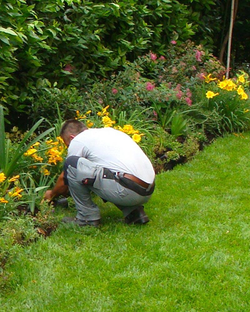 creazione-impianto-giardini-per-ville