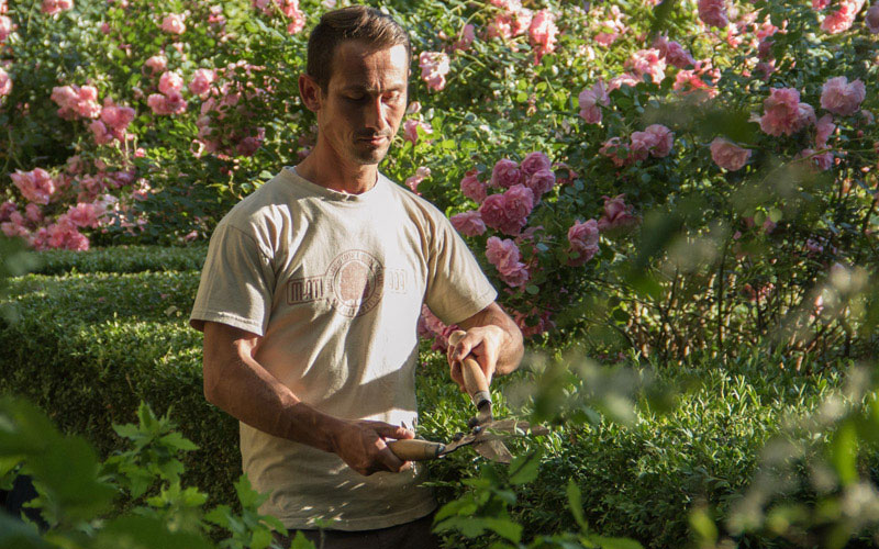 giardinieri-per-la-cura-dei-giardini