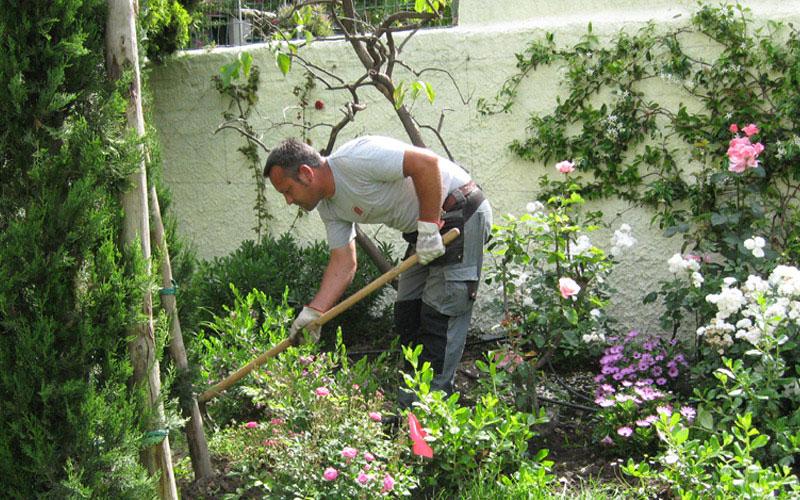 lavori-di-giardinaggio-MATI1909