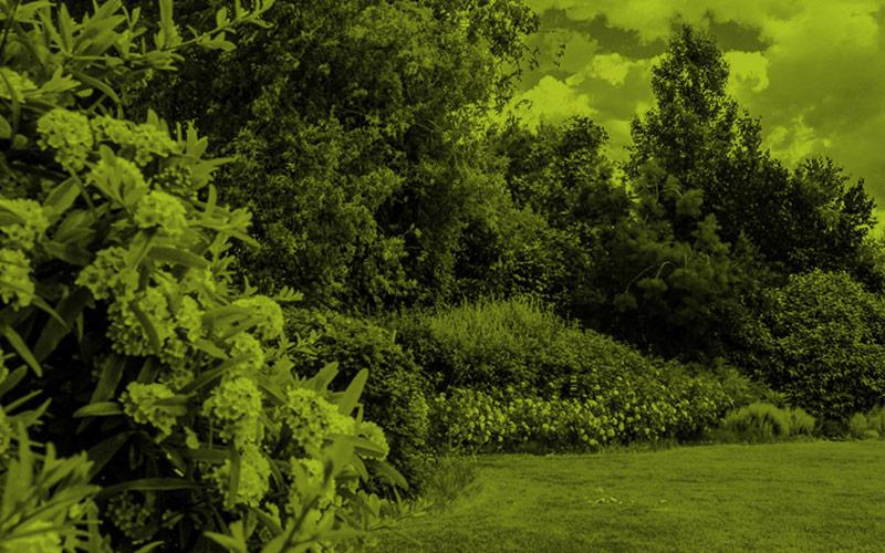 progettazione-di-giardini-con-certificazione-ambientale-MATI4LIFE