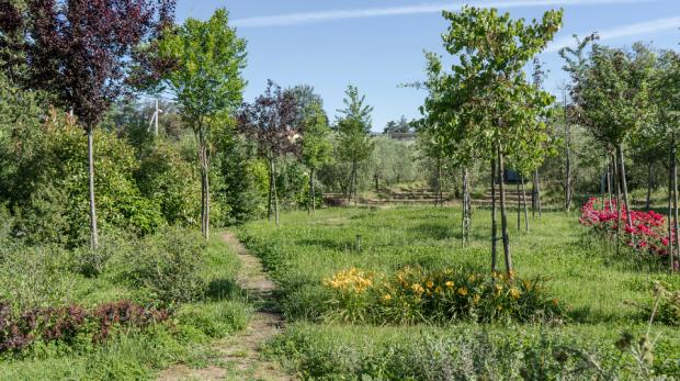 eco-della-stampa-giardino-terapeutico
