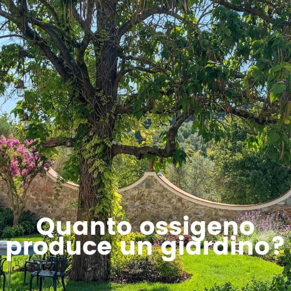OSSIGENO-GIARDINO